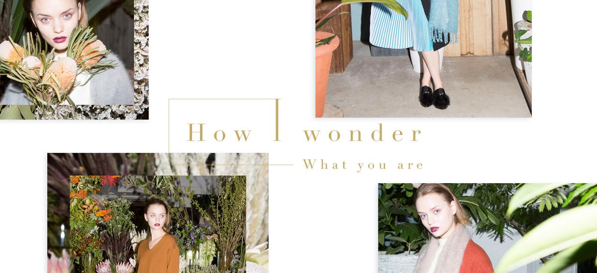 How Wonder